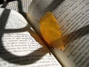 Για την ποίηση και τη χειραφέτηση
