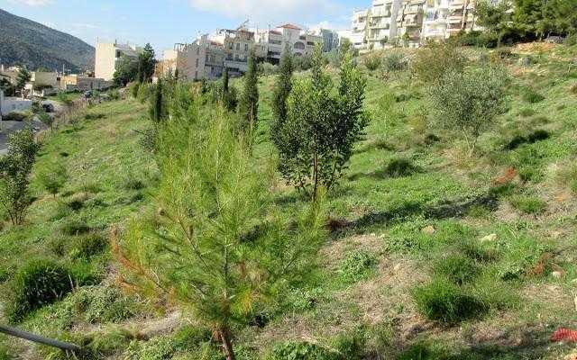 Δημήτρης Μαραβέλιας: Δεν θέλαμε να προκαλέσουμε κοινωνική αναστάτωση στο Άνω Δάσος